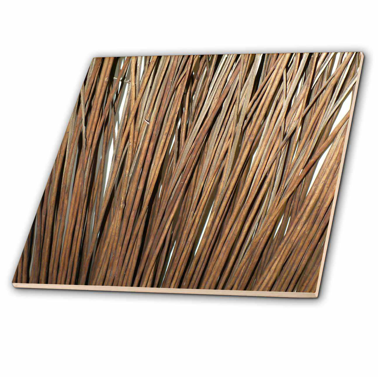 3dRose Twigs - Ceramic Tile, 4-inch
