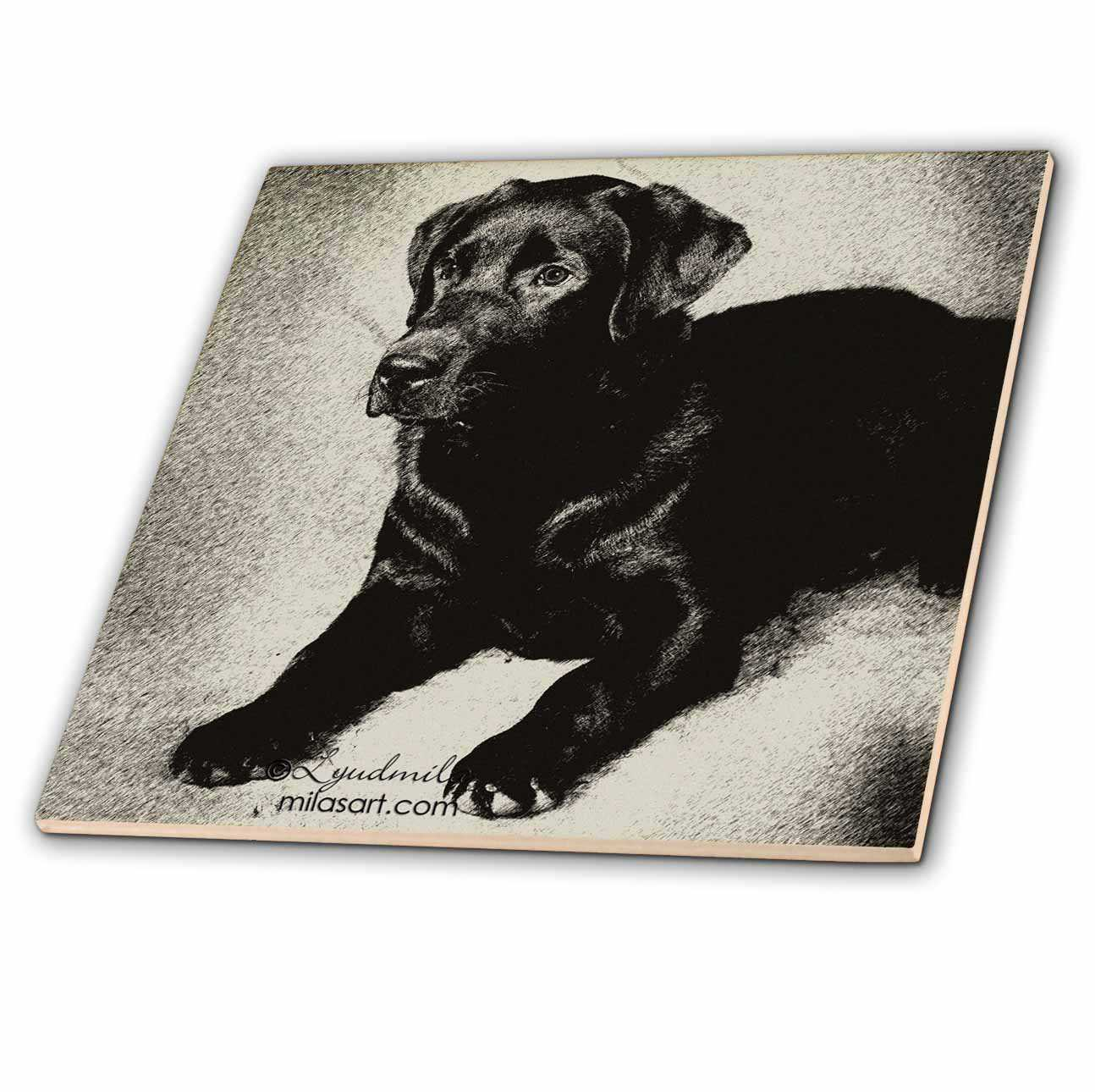 3dRose Labrador Retriever - Ceramic Tile, 4-inch